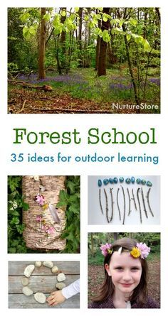 Dark Wood clipart forest school 25+ on Forest More act