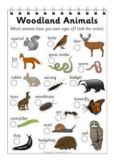 Dark Wood clipart forest school More FREE & Forest <b>Animals