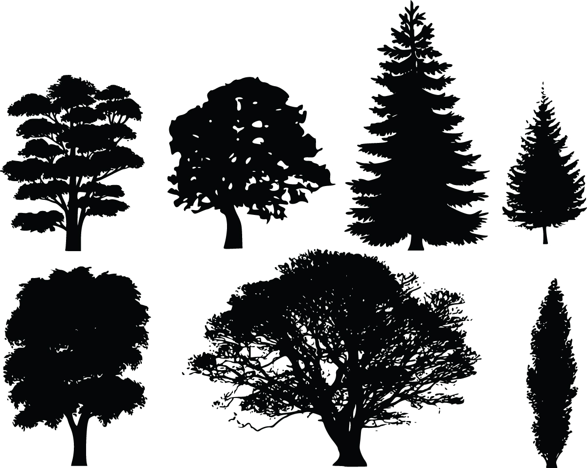 Dark Wood clipart forest tree Clip  and tree Tree