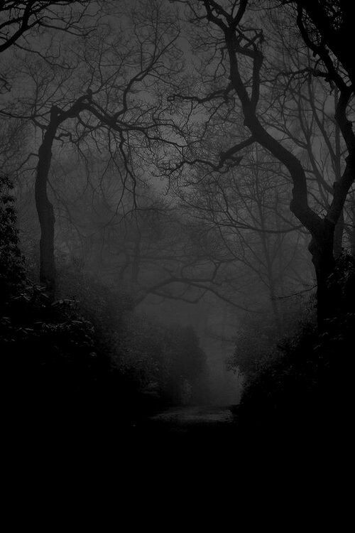 Dark Wood clipart haunted forest Haunted forest ghost Tumblr forest