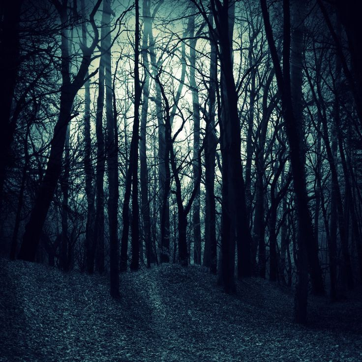 Dark Wood clipart scared the dark Pinterest a com Flight Scary