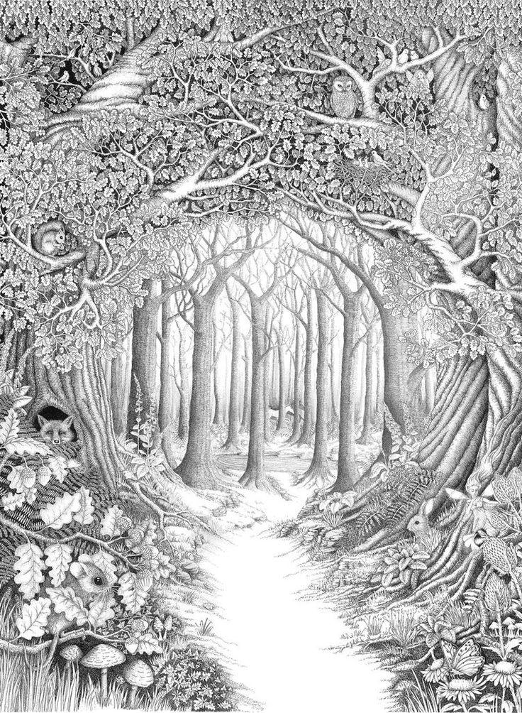Dark Wood clipart winter forest Best Woods Find Clipart Clipart
