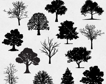 Dark Wood clipart woodland tree Autumn tree Tree pine Tree