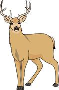 Dear clipart cute deer Dear Clip Art Clip Dear