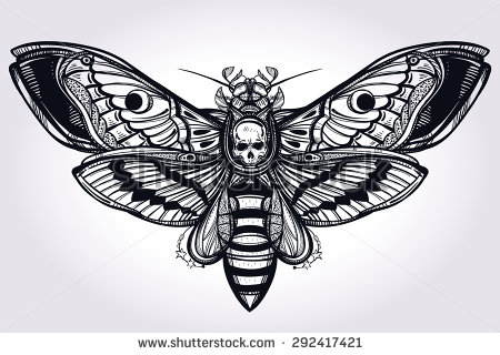 Deaths Head Moth clipart Tattoo head moth Search Google