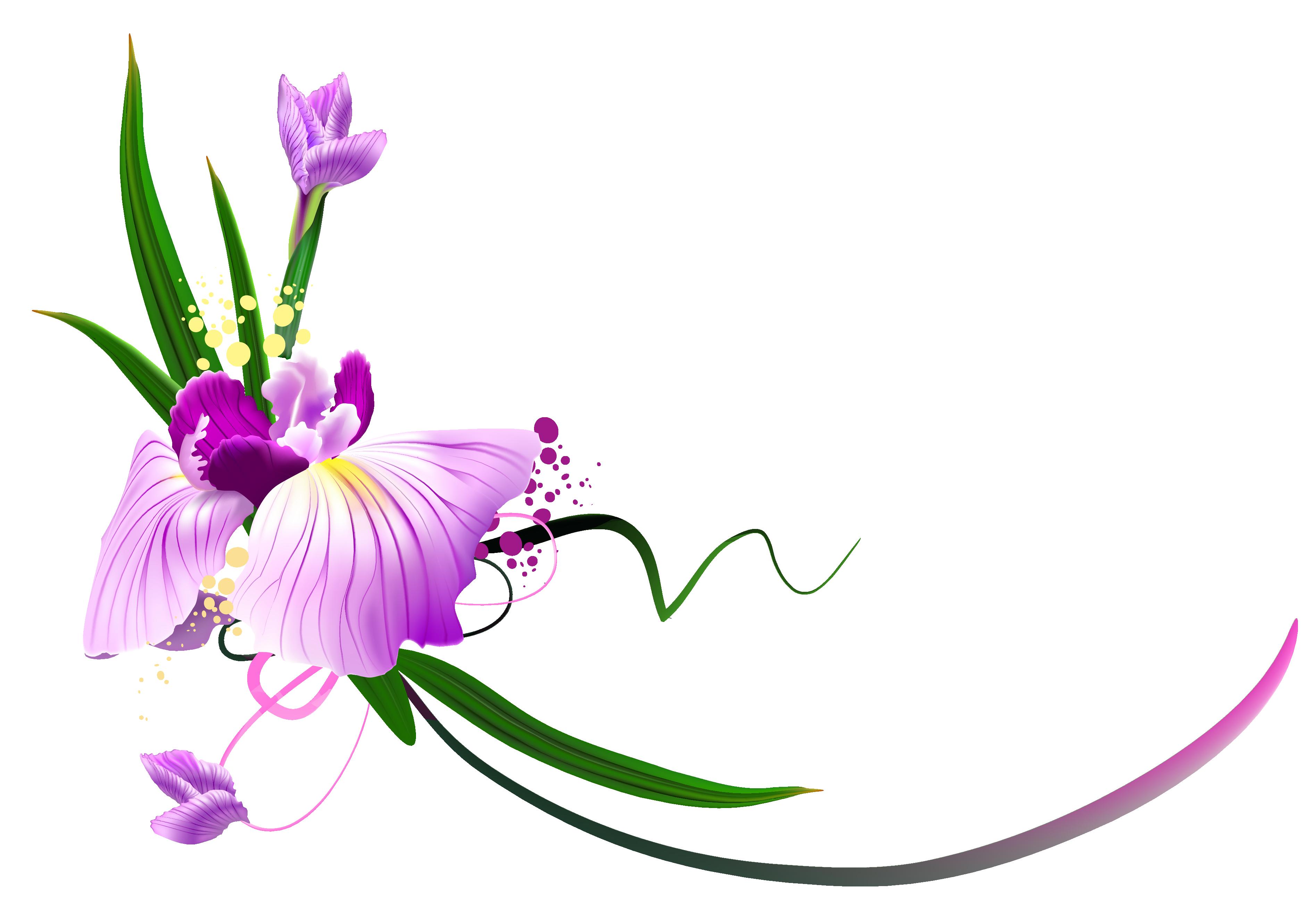 Decoration clipart pretty flower Clipart png Floral png clipart