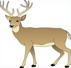 Deer clipart Clipart Free deer Deer