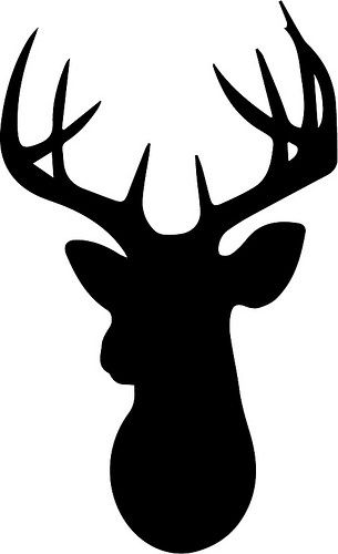 Buck clipart moose head Pinterest free head Deer head