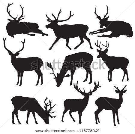 Drawn stag drinking water Deer Art Clip Silhouette Drinking