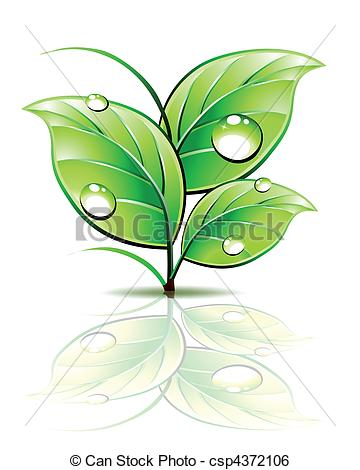Dew clipart Of Vector Vector dew green