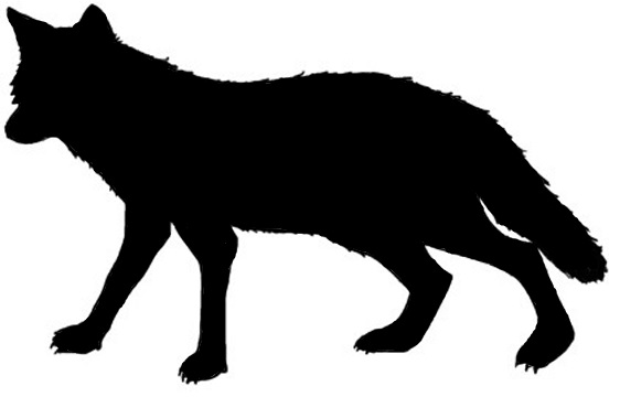 Dingo clipart Dingo Images Clipart Info Free