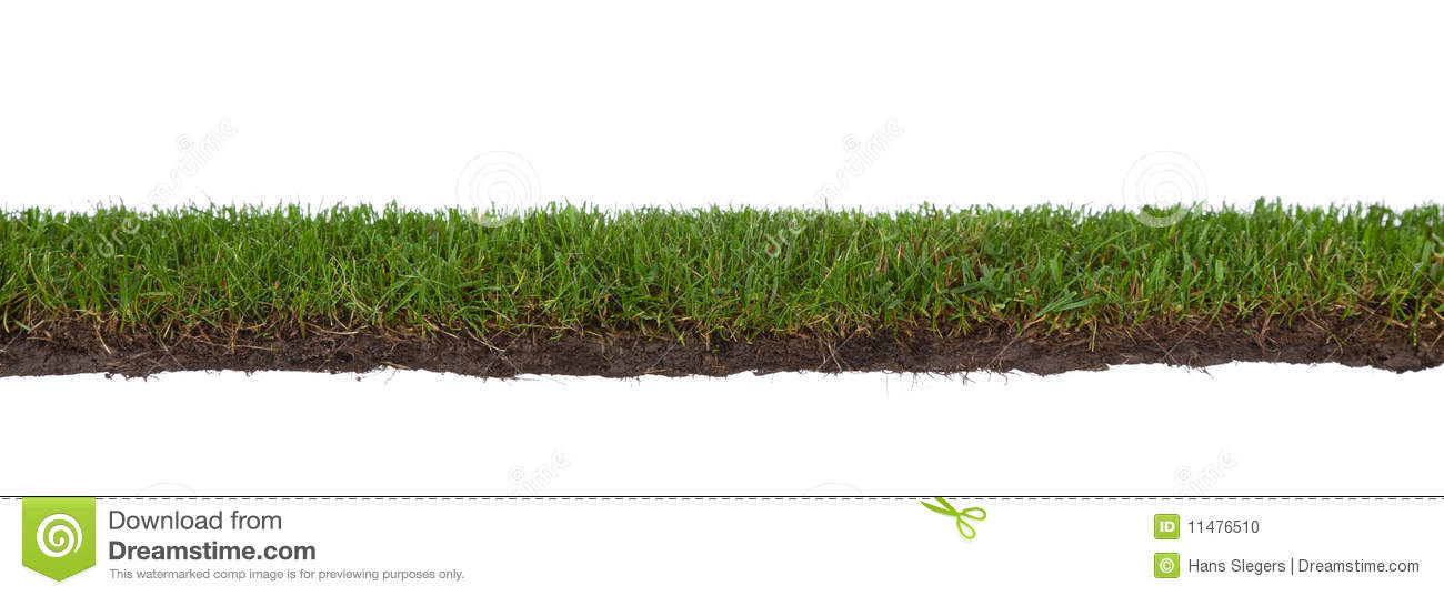 Roots clipart art And Grass Dirt Dirt cliparts