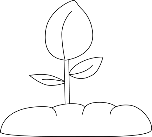 Plant clipart plant sprout Clip White and Art Garden