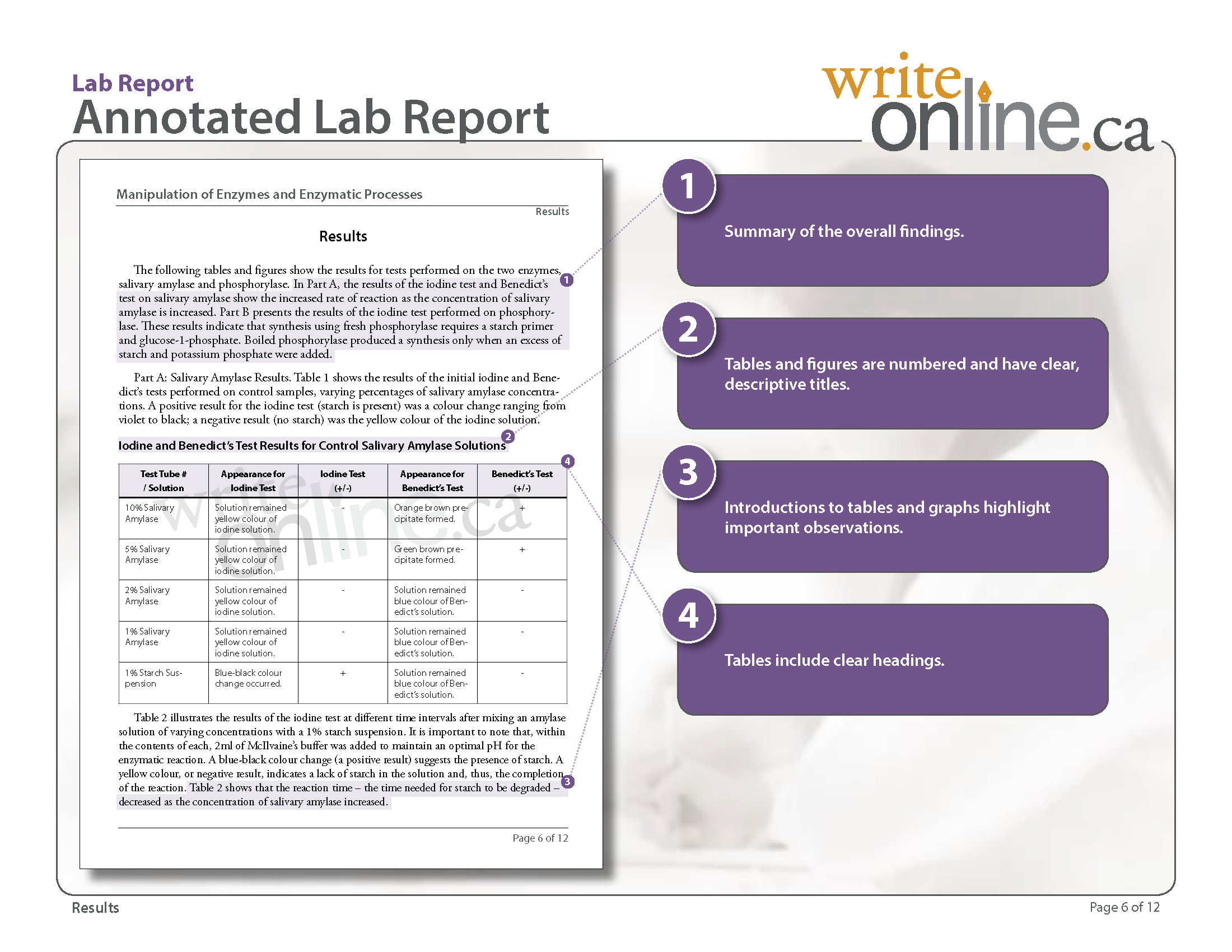 Display clipart lab report Results Write Guide of Lab