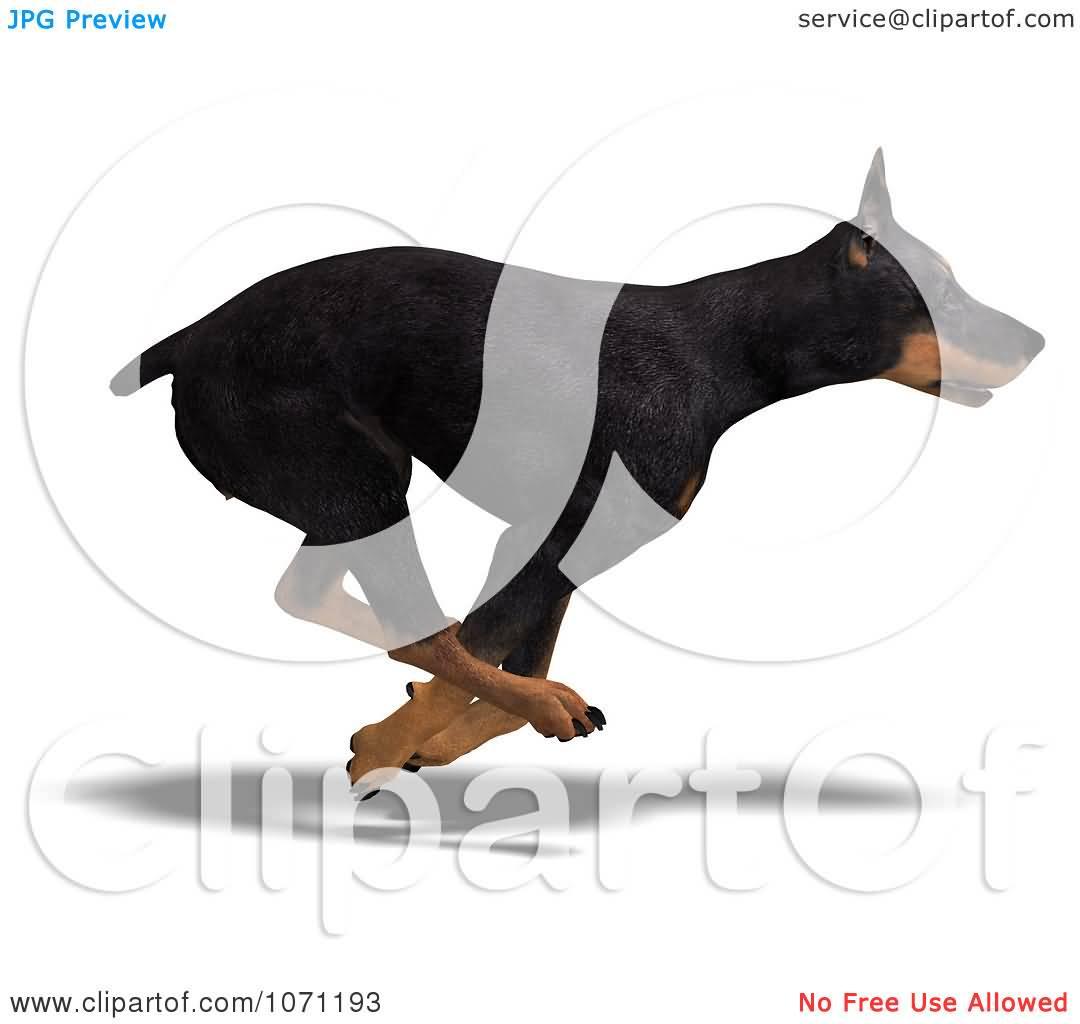 Doberman Pinscher clipart Dog Tattoo Amazing Designs Clipart