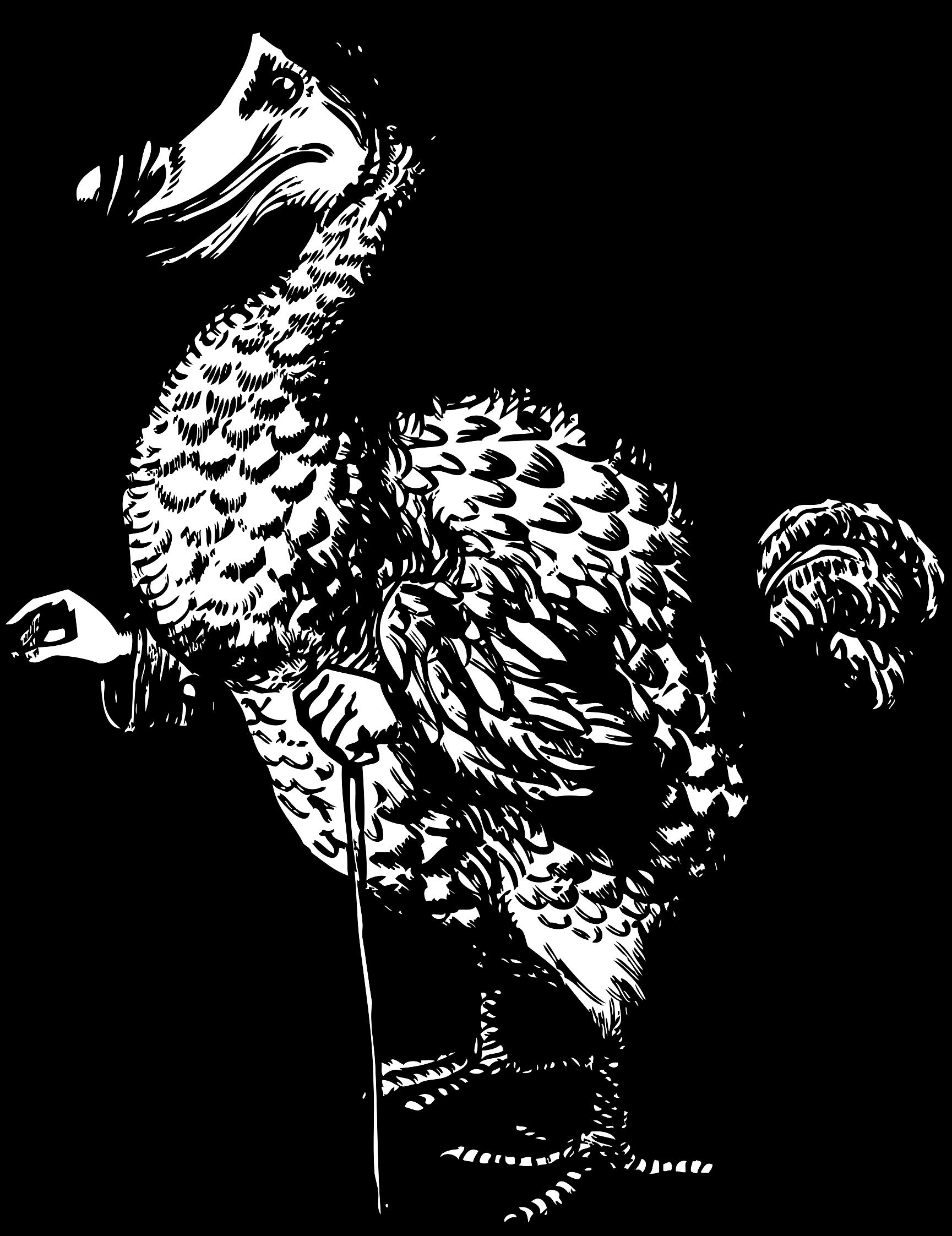 Dodo clipart The from Dodo Alice in