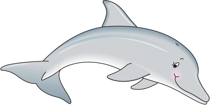 Bottlenose Dolphin clipart cute baby dolphin #10