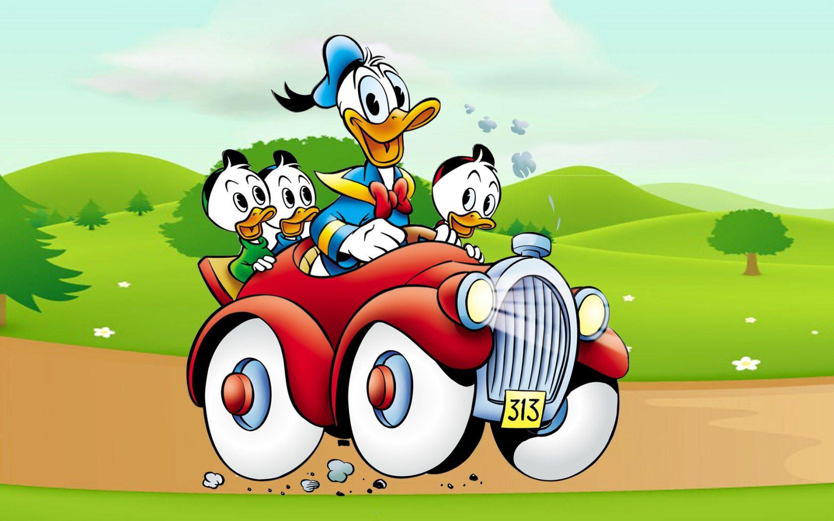 Donald Duck clipart car driving Image Country Desktop · Car