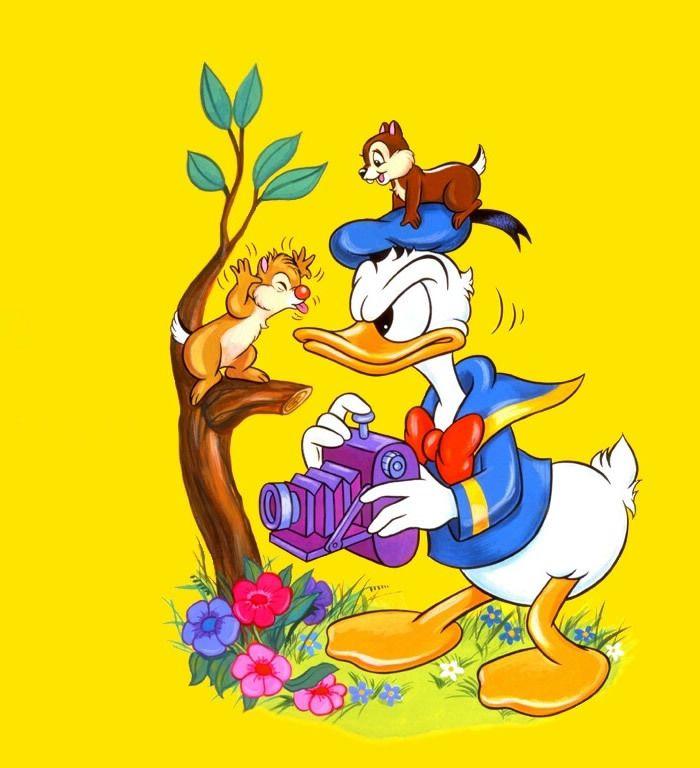 Donald Duck clipart hd wallpaper Duck Donald on Donald best