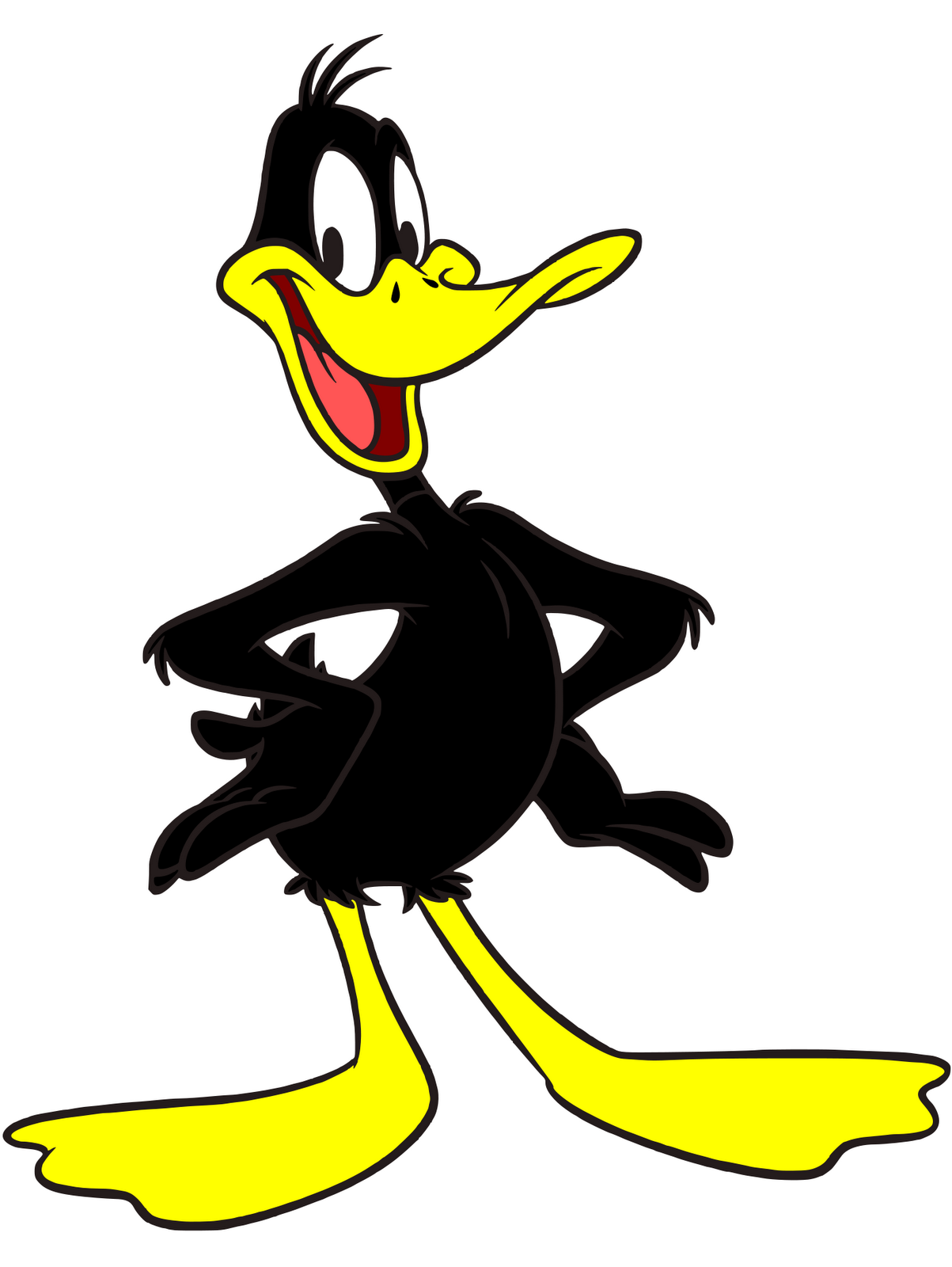 Donald Duck clipart looney tunes Duck or Daffy ect