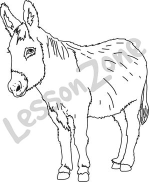 Realistic clipart donkey #12