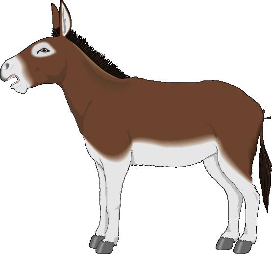 Sad clipart donkey #9