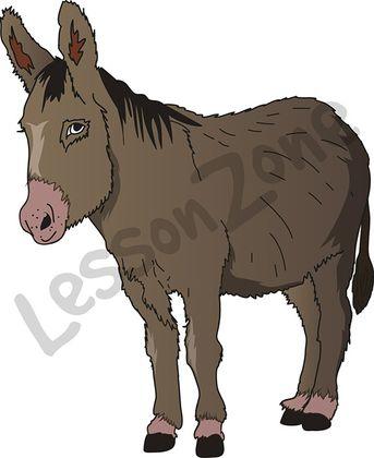 Realistic clipart donkey #4