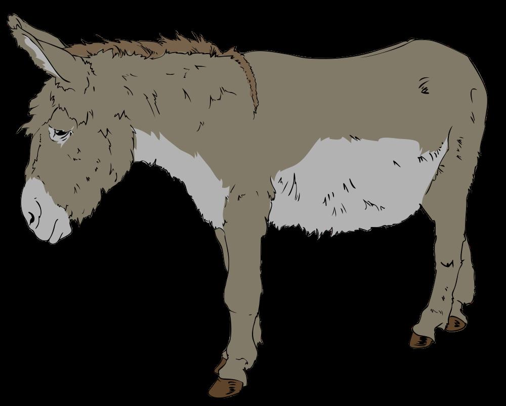 Sad clipart donkey #2