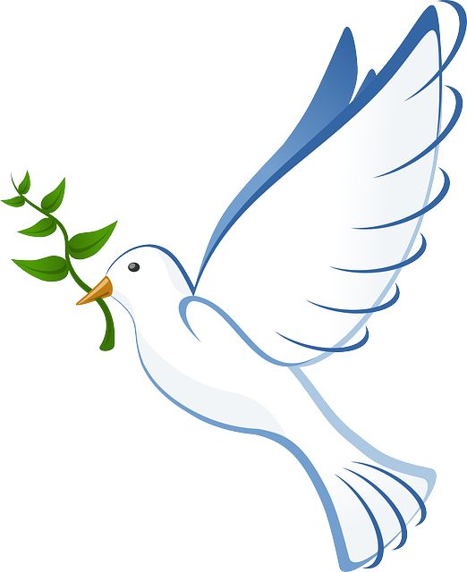 Peace Dove clipart pigeon flying #3