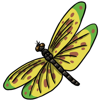 Yellow clipart dragonfly 20 Dragonfly Art Dragonfly 50