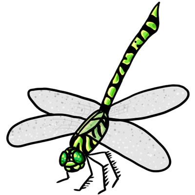 Dragonfly clipart Art Dragonfly 22 Clip Dragonfly
