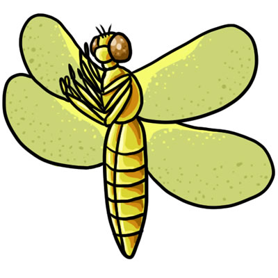 Yellow clipart dragonfly Drawings Dragonfly Art Dragonfly and