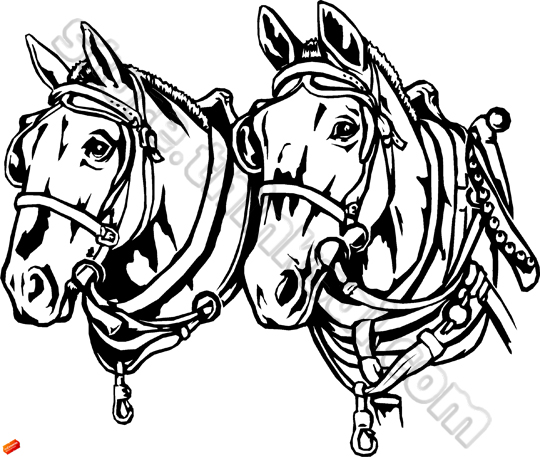 Draught Horse clipart Clipground draft free royalty horse