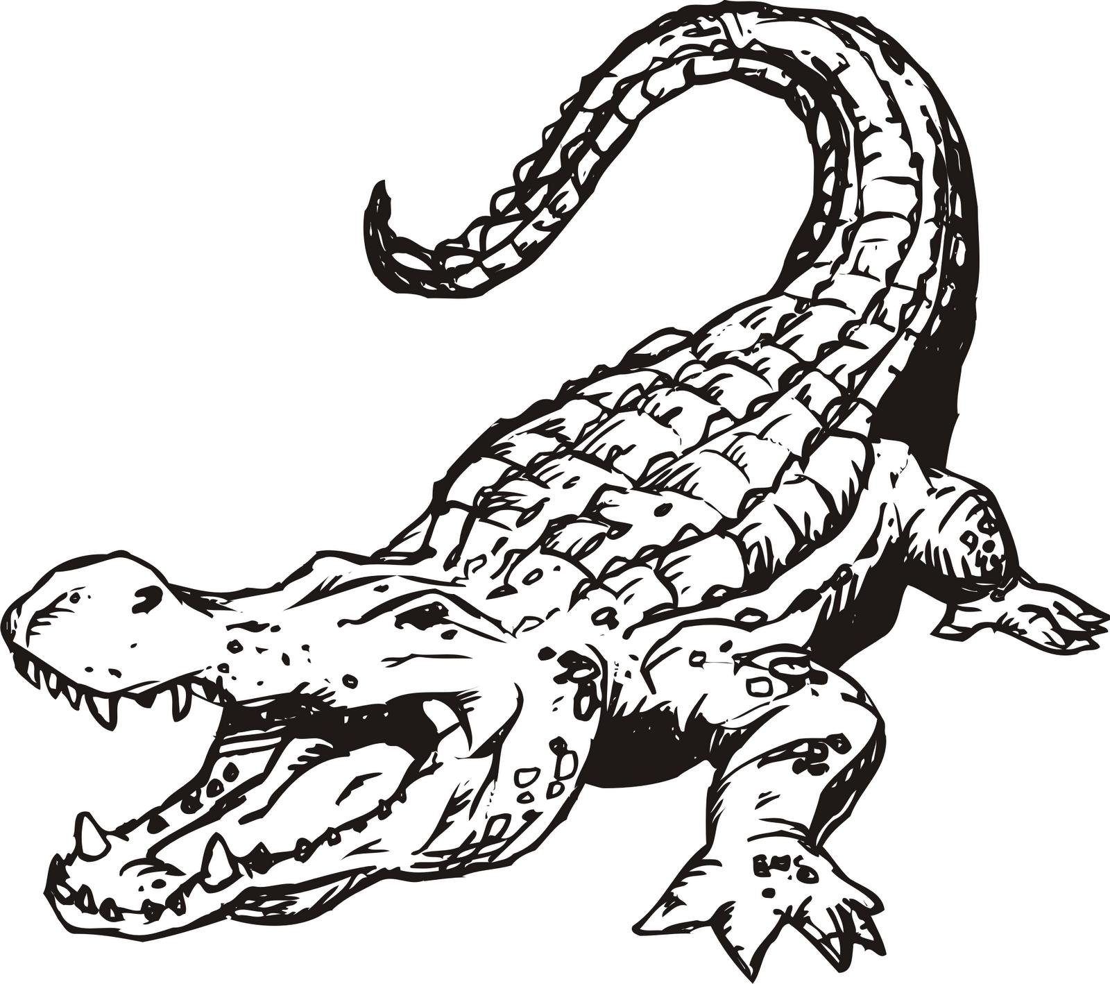 Monochrome clipart alligator #2