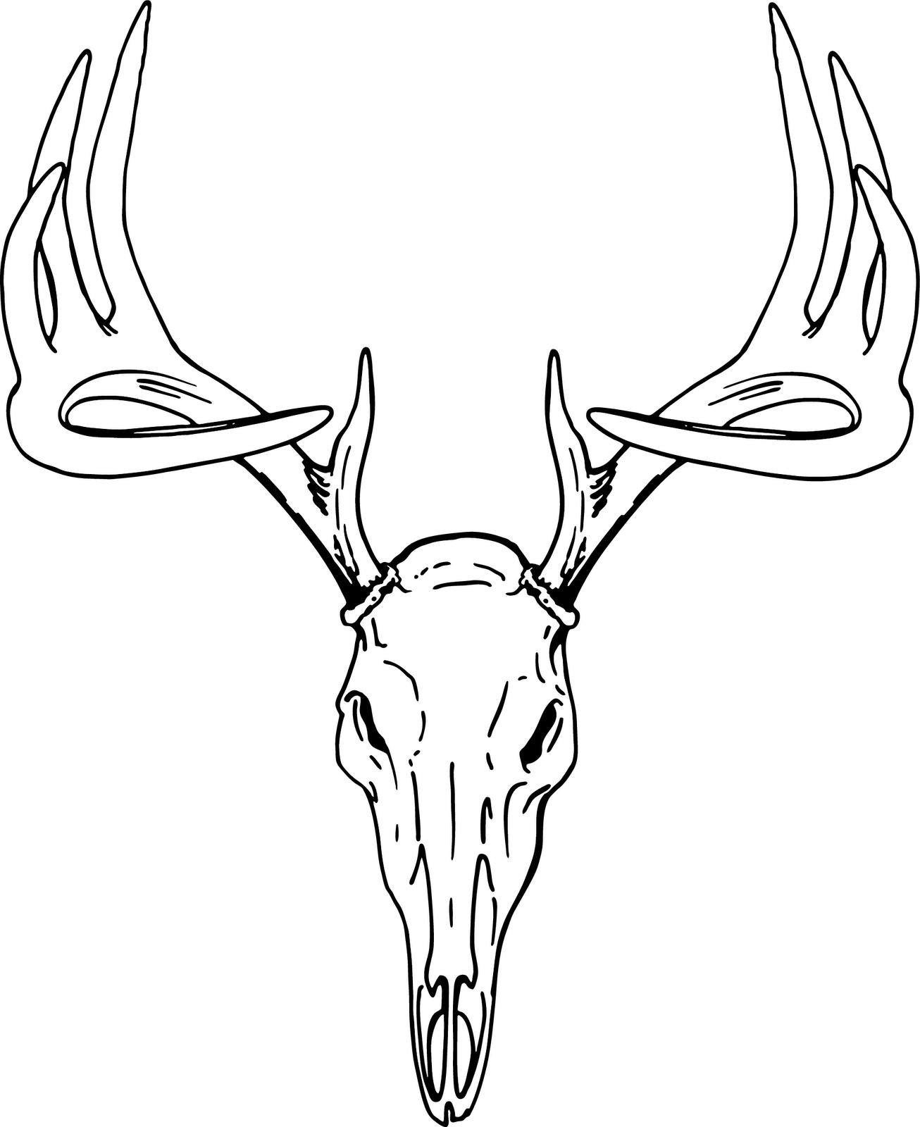 Buck clipart deer skull Deer Brown head deer clipart