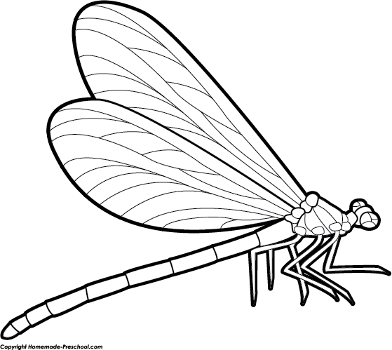 Drawing clipart dragonfly Clipart Dragonfly Dragonfly Free Black