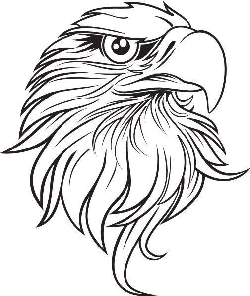 Eagle clipart line drawing 3 Download Vector eagle art