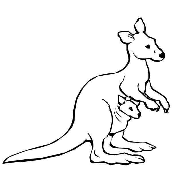 Drawn kangaroo black and white Baby Baby Panda Clipart Images