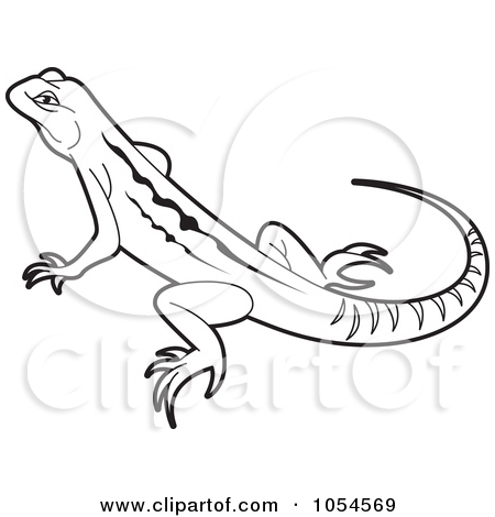 Drawn reptile outline Lal by drawings Free lizards