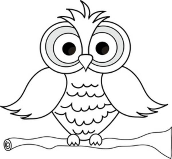 Owlet clipart black and white Feathers Owl Large Pages Coloring