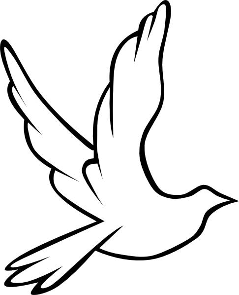 Drawn pigeon religious Free clip (89 Dove art
