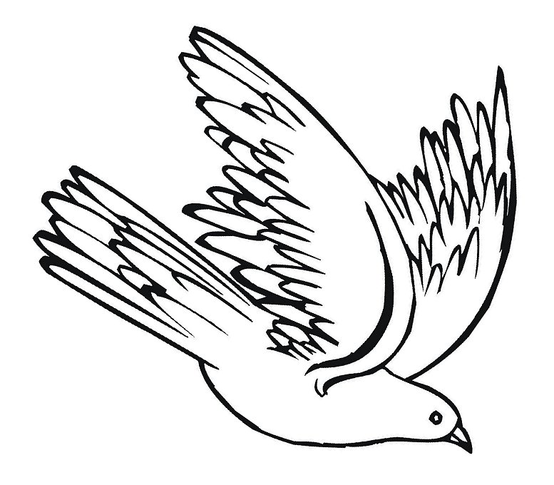 White clipart pigeon flying Image clipart ClipartAndScrap clip pigeon