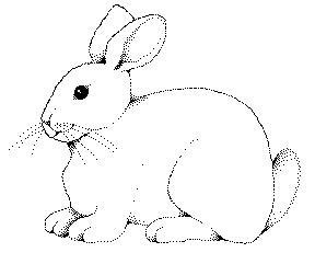 Drawn rabbit cliparts Drawing outline Google Search rabbit