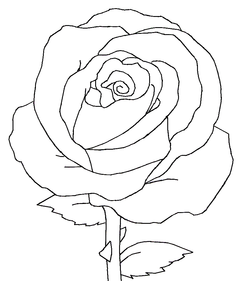 Drawn red rose head Single Images Drawings Black Black