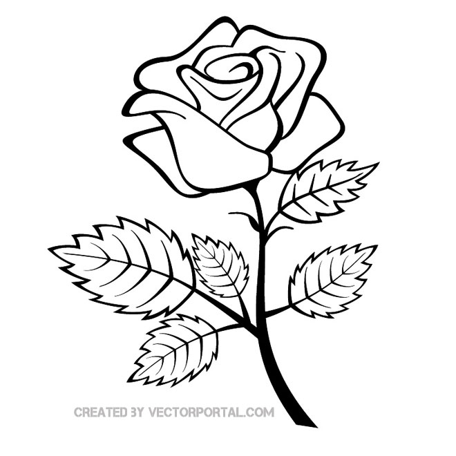 Drawn rose stem outline Rose Free on Art Rose
