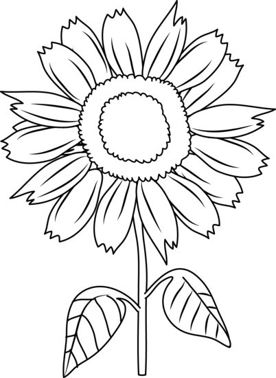 Drawn sunflower Coloring Page Sunflower Pretty Art