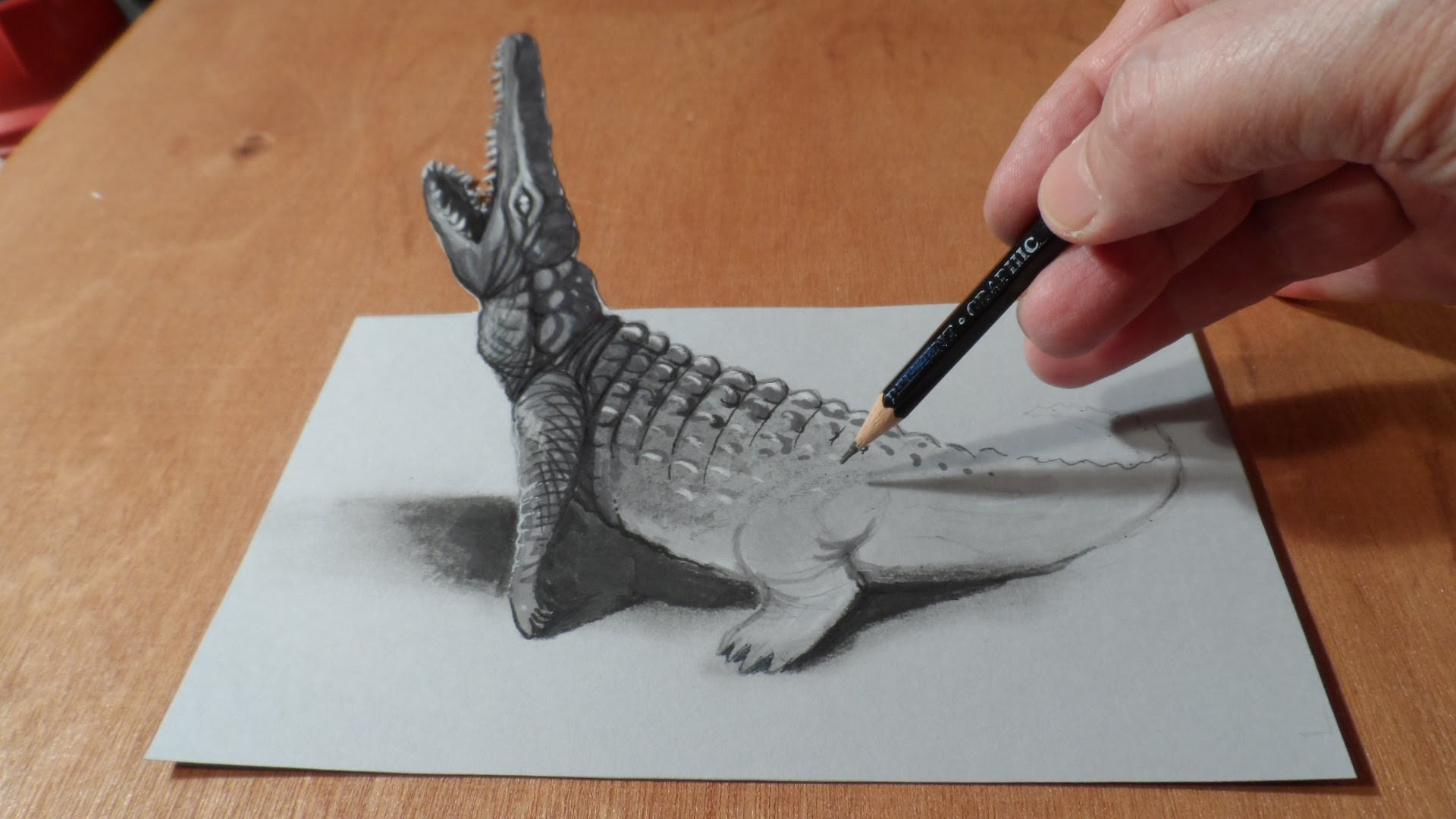 Drawn 3d 3D Optical Drawing Trick Crocodile