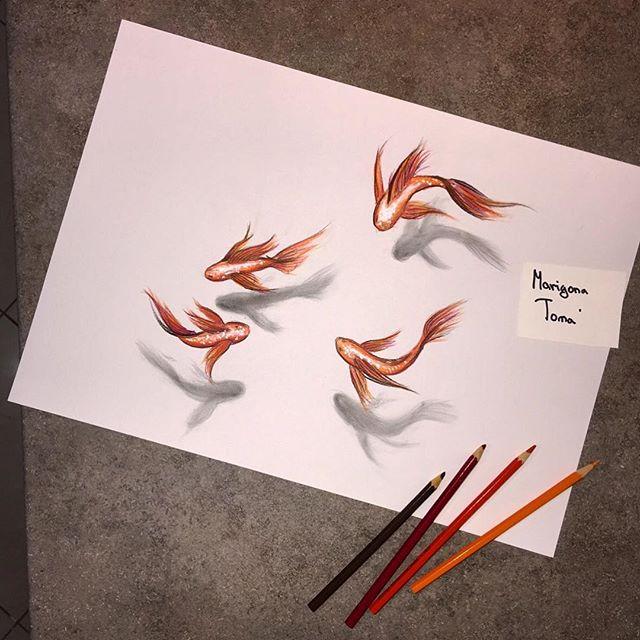 Drawn goldfish fish swimming Fish Instagram goldfish marigona_toma on