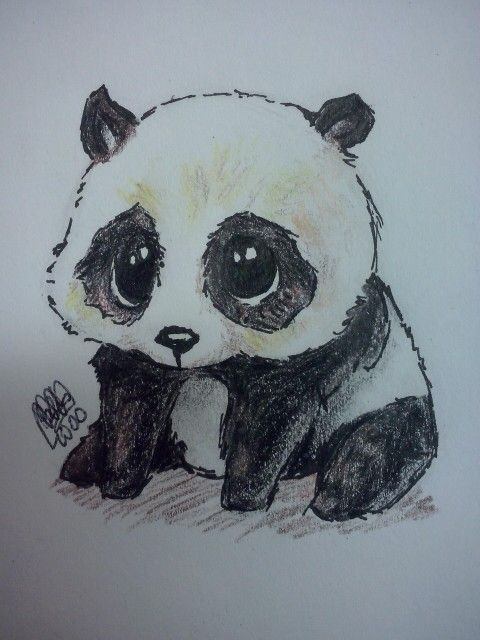 Drawn panda one color Panda Pinterest dibujo_drawing The ideas