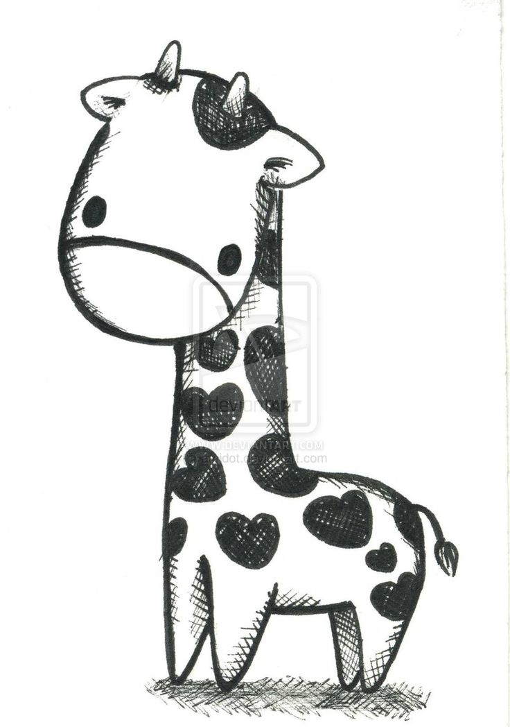 Drawn brds cute pet The best Animals Cute For